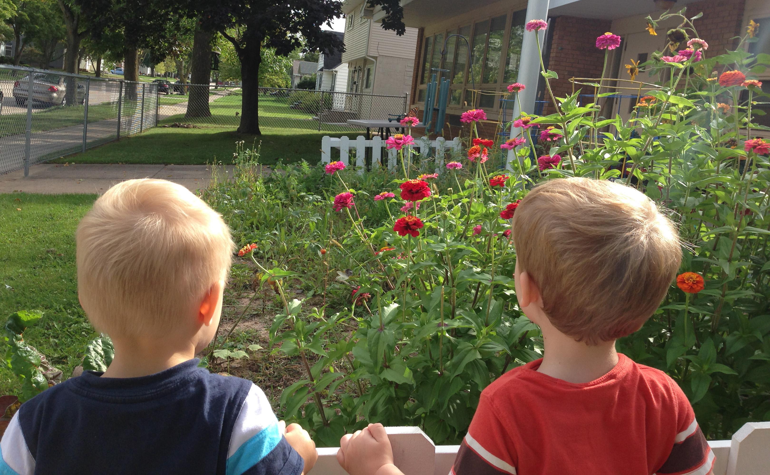 Testimonials for Community Child Care Center