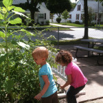 children play in garden at Community Child Care Center